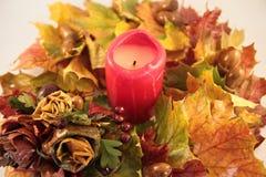 Herbstgirlande Lizenzfreies Stockbild