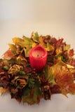 Herbstgirlande Stockbild