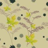 Herbstgrün lässt Muster Stockfoto