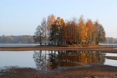 Herbstgruppe Bäume Stockfoto
