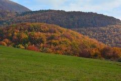 Herbsthügel Stockbild