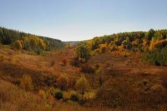 Herbsthügel mit Bäumen und Büschen Stockfotografie