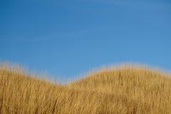 Herbsthügel und blauer Himmel Stockfotos
