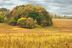 Herbsthügel vor einem Regen Stockfotografie
