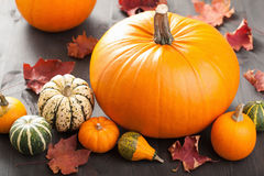Herbsthalloween-Kürbise auf hölzernem Hintergrund Stockfotos
