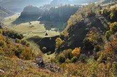 Herbstherbstlaub Stockfoto