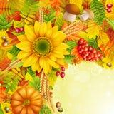 Herbsthintergrund Stockbilder