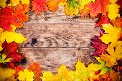 Herbsthintergrund, bunte Baumblätter Lizenzfreie Stockfotos