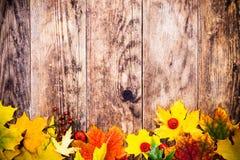 Herbsthintergrund, bunte Baumblätter Lizenzfreies Stockbild