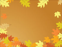 Herbsthintergrund - Fallfarben mit Blättern Stockfotos