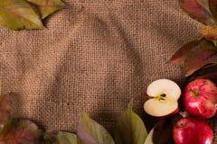 Herbsthintergrund mit Äpfeln lizenzfreies stockbild