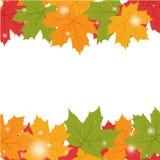 Herbsthintergrund mit Ahornblättern Stockbild