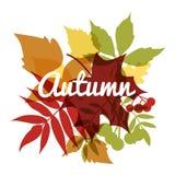 Herbsthintergrund mit Blättern vektor abbildung