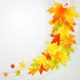 Herbsthintergrund mit Blättern Vektornatur Lizenzfreie Stockfotos