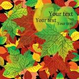Herbsthintergrund mit bunten Ahornblättern Lizenzfreie Stockfotografie