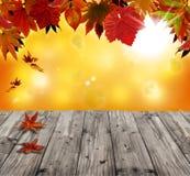 Herbsthintergrund mit dem roten Fallen Lizenzfreie Stockfotos