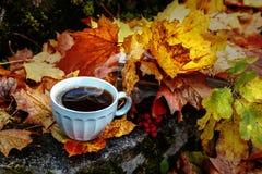Herbsthintergrund mit einer Tasse Tee stockbild
