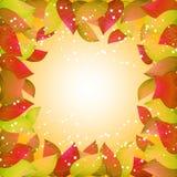 Herbsthintergrund mit gelben Blättern Schablonen für Plakate, Fahnen, Flieger, Darstellungen, Berichte Auf lagerabbildung Stockfotografie
