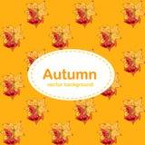 Herbsthintergrund mit Halloween-Kürbis vektor abbildung