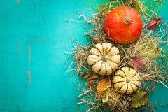 Herbsthintergrund mit Kürbisen auf einem Heu mit Herbstlaub Lizenzfreie Stockfotos
