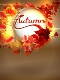 Herbsthintergrund mit Leuchten Plus-EPS10 Lizenzfreies Stockbild