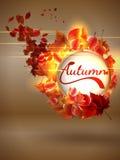 Herbsthintergrund mit Leuchten Plus-EPS10 Lizenzfreie Stockfotografie