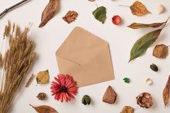 Herbsthintergrund mit offenem Umschlag Stockfotografie