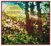Herbsthintergrund mit Wald von Würfeln vektor abbildung