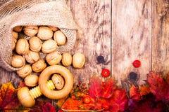 Herbsthintergrund mit Walnüssen und bunten Baumblättern Lizenzfreie Stockbilder