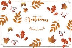 Herbsthintergrund mit Weinleseart Stockfoto