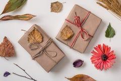 Herbsthintergrund mit zwei Geschenken Stockfotografie