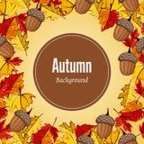 Herbsthintergrund-Vektorillustration Lizenzfreie Stockfotos