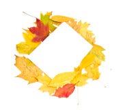 Herbsthintergrund von den Blättern Lizenzfreies Stockfoto