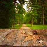 Herbsthintergrund von gefallenen Blättern über Holztisch und Waldbackgrond mit Blendenfleck und Sonnenuntergang Lizenzfreie Stockbilder