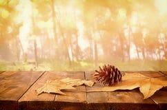 Herbsthintergrund von gefallenen Blättern über Holztisch und Waldbackgrond mit Blendenfleck und Sonnenuntergang Stockfotografie