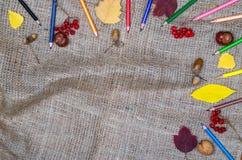 Herbsthintergrundkonzept: farbige Bleistift- und Herbstlaubspitze Lizenzfreies Stockbild