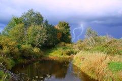 Herbstholz Lizenzfreie Stockfotografie