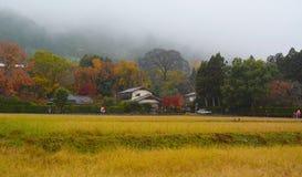 Herbstjapanergarten stockfotografie