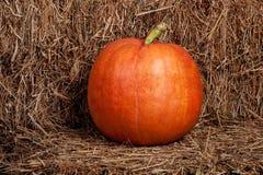 Herbstkürbis auf einem Stroh Lizenzfreies Stockbild
