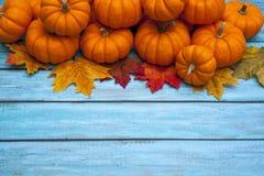 Herbstkürbis-Danksagungshintergrund Stockbilder