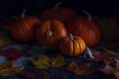 Herbstkürbis mit Ahornblättern auf hölzernem Hintergrund Lizenzfreies Stockfoto