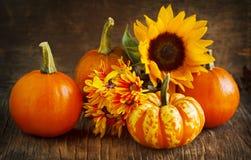 Herbstkürbise, -astern und -sonnenblume Lizenzfreie Stockfotos