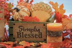Herbstkürbise und Dekor stockfoto