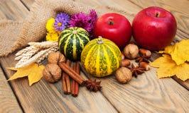 Herbstkürbise und -nüsse Lizenzfreie Stockfotos