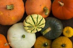Herbstkürbiszusammenstellung von oben Stockbilder