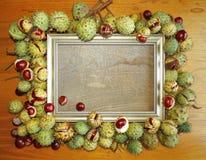Herbstkastanie und goldener Rahmen Lizenzfreies Stockbild