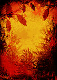 Herbstkiefern Lizenzfreies Stockbild