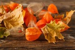 Herbstkonzept mit Herbststillleben - alte Bücher unter dem autum Stockfotografie