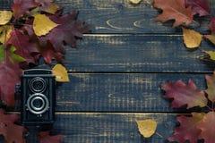 Herbstkonzert Lizenzfreie Stockfotos