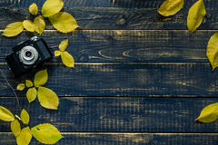 Herbstkonzert Stockfotografie